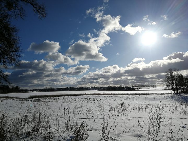 Zima1 - ARt KOz