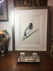 Grey Butcherbird (original unframed)