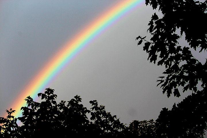 Rainbow - luckazarts
