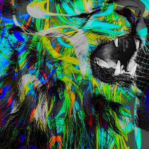 Bc cat 0294