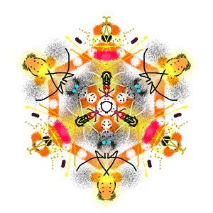 Kaleidoscope Specimen N°5