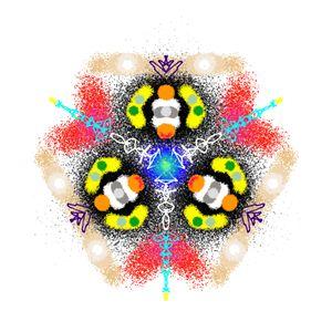 Kaleidoscope Specimen N°10