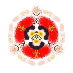 Kaleidoscope Specimen N°12