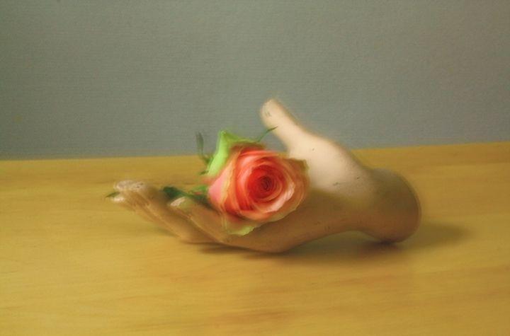 Still Life -Rose and Hand- - Alexander Henry