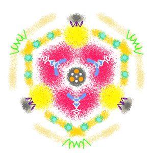 Kaleidoscope Specimen N°13