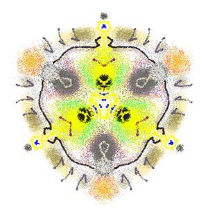 Kaleidoscope Specimen N°14