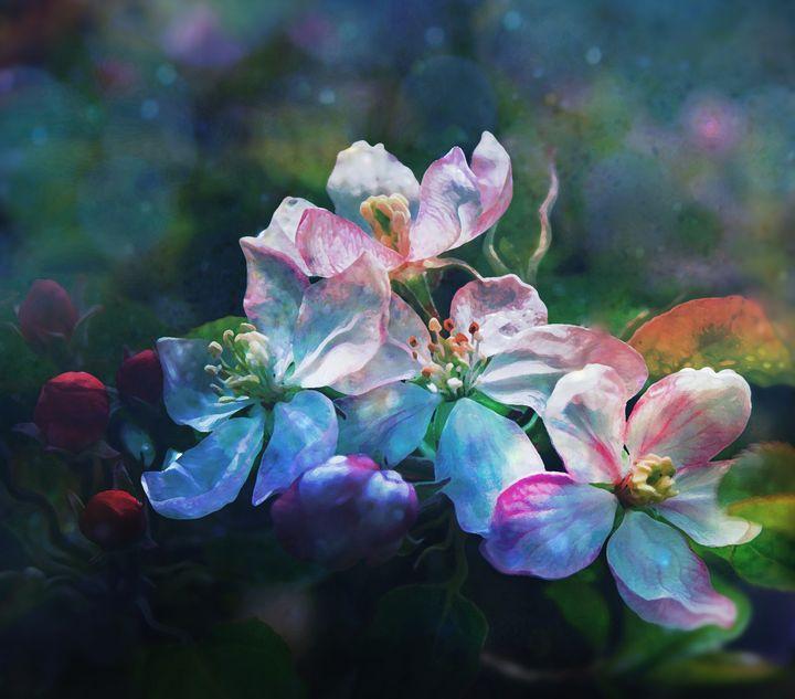 Apple Blossom - Beyond Reality