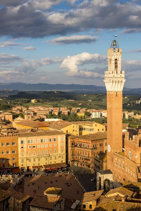 Torre Del Mangia in Siena - Andy McGarry Photo