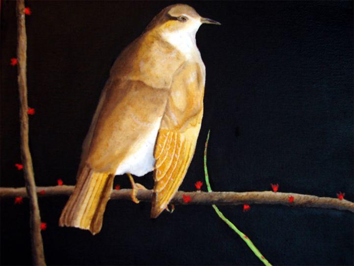 Bird in tree - C. R. Harrell