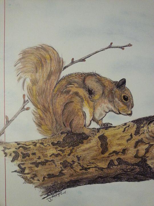 A little Squirrelly - Maxd-Grafx-Ink