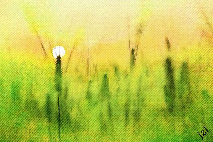 Sunrise - Artists Korner