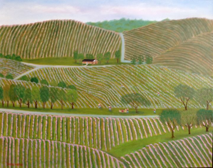 NAPA VALLEY - Leslie Dannenberg, Oil Paintings