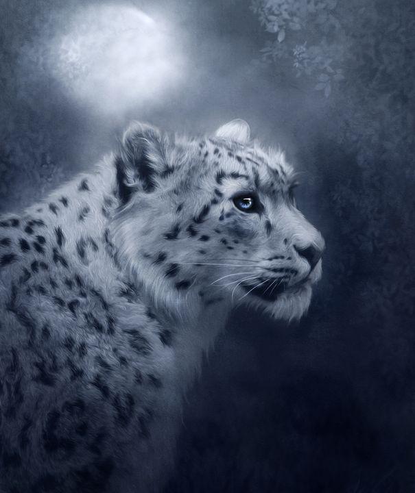 Snow Leopard - Dania