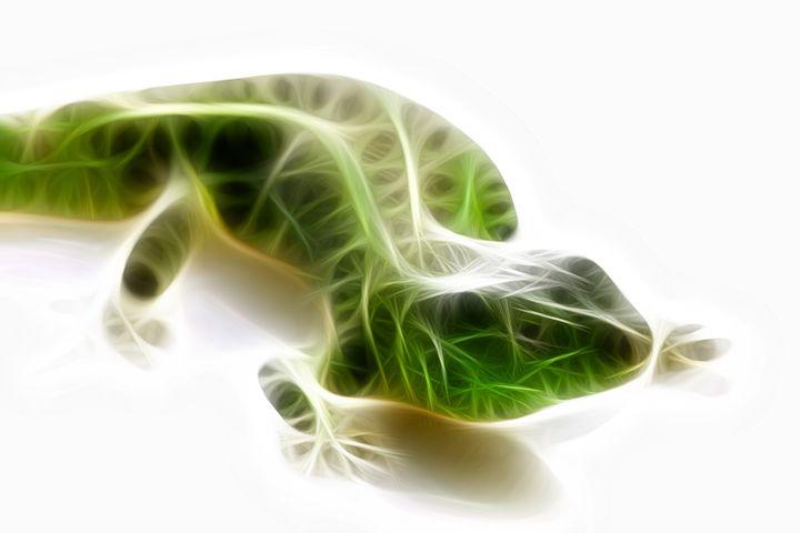Lizard - Croag