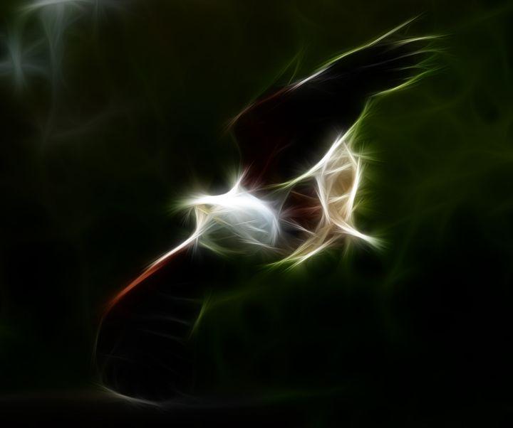 Eagle - Croag