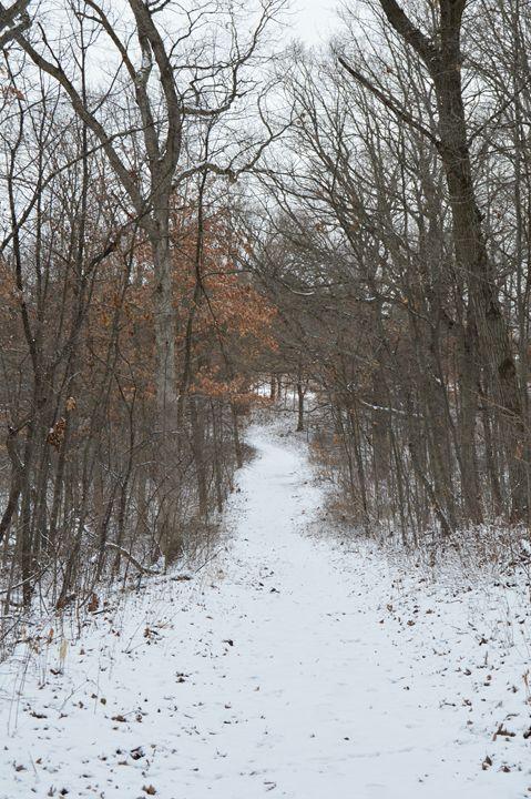 Trail - Sam Glidewell