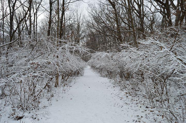 Trail II - Sam Glidewell