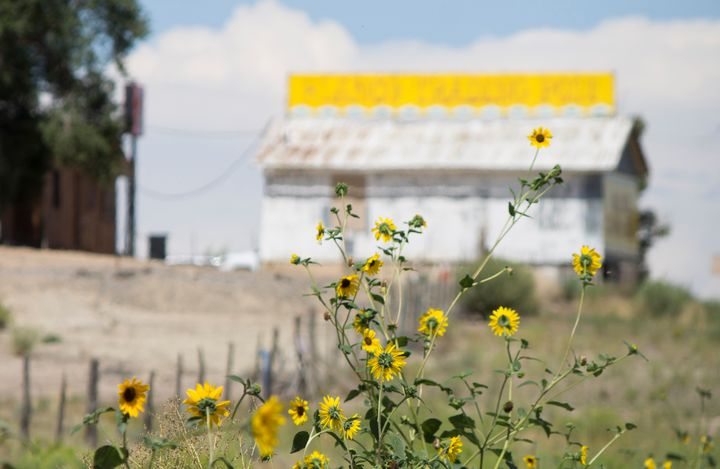 Sunflowers and Blanco Trading Post - Jonathan P. Thompson
