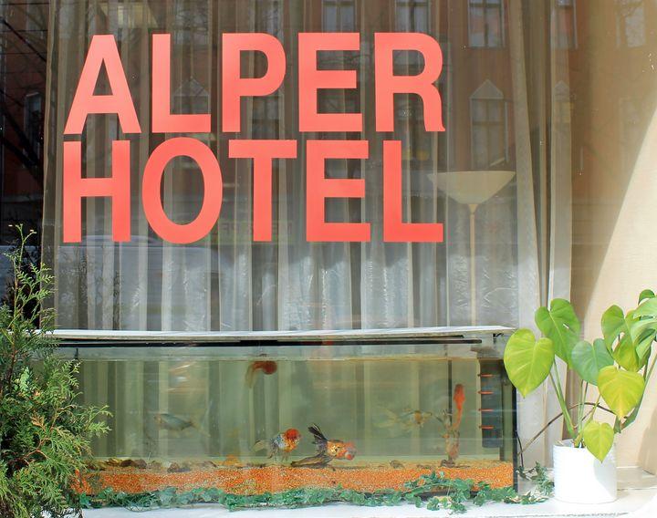 Hotel Window and Goldfish Berlin - Jonathan P. Thompson