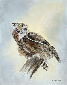 SKY HUNTER (Great Horned Owl)
