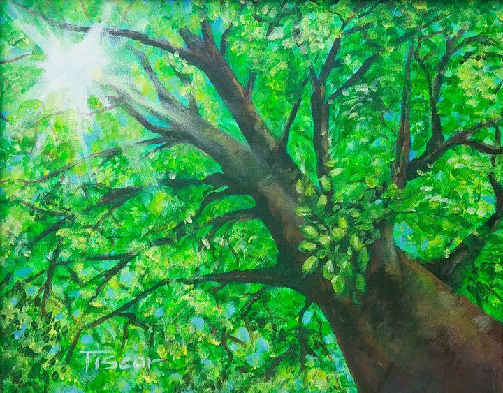 Good day green tree. - Tiscar Valles