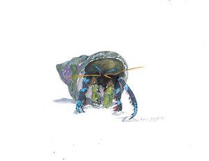 Electric Blue Hermit Crab