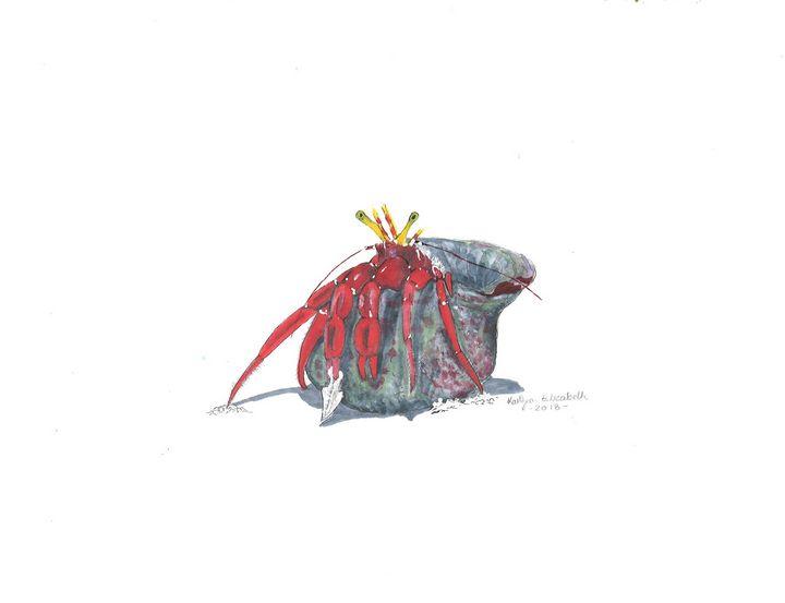 Marine Hermit Crab - Kaitlyn Elizabeth
