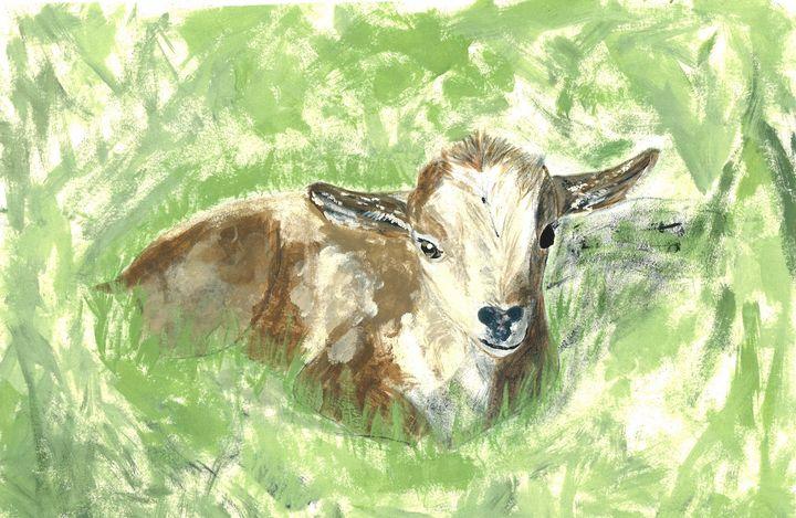Goat - Kaitlyn Elizabeth