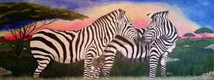 Love of Zebras