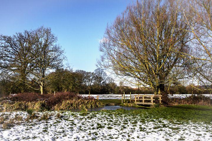 A Cold Morning in Tidmarsh Meadows - Ian W Lewis