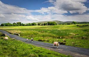 The Road To Caldbeck