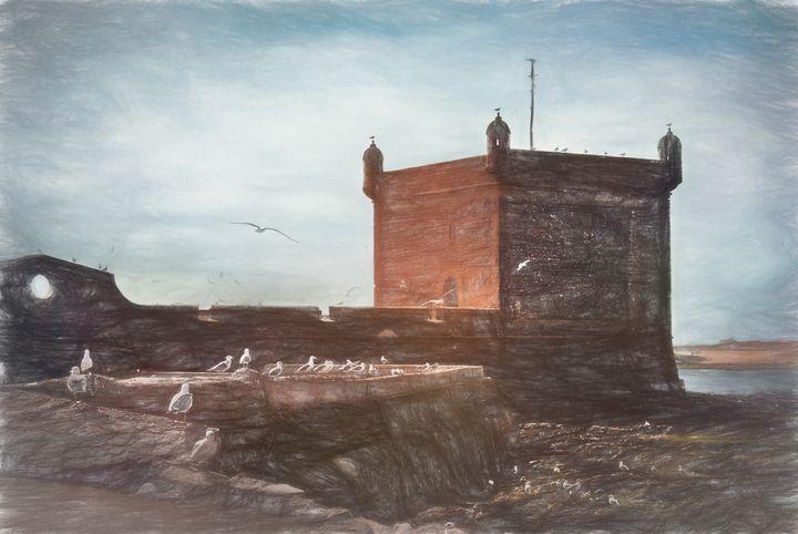 Gulls at Essaouira Citadel Morocco - Ian W Lewis
