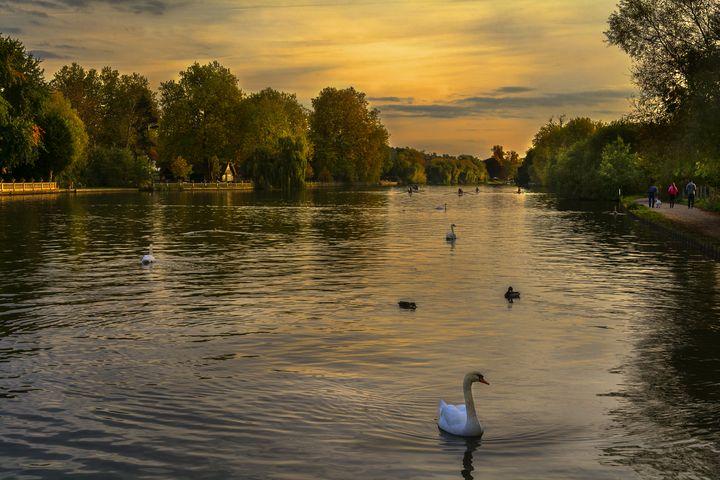 Thames Sunset - Ian W Lewis