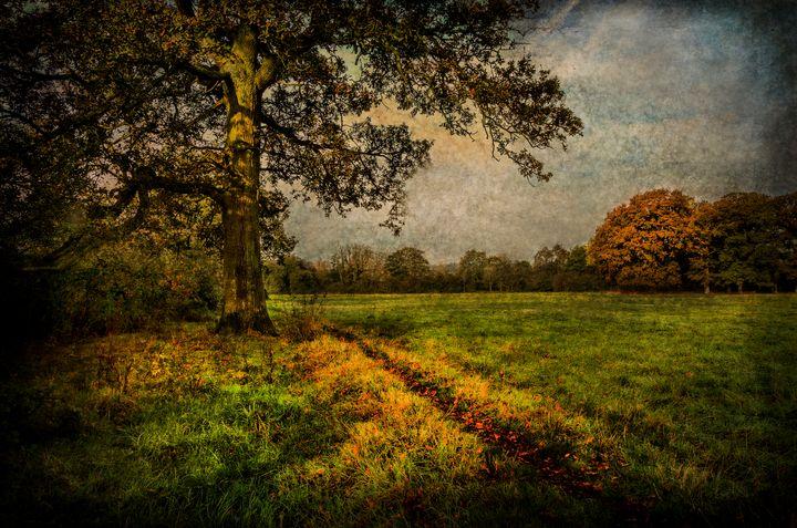 Tidmarsh Meadows in Autumn - Ian W Lewis