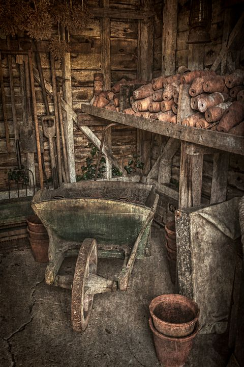 The Garden Shed - Ian W Lewis