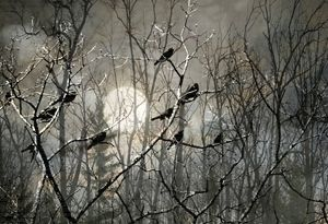 Blackbirds in a Moonlit Sky