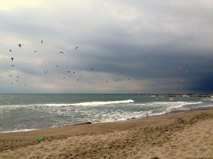 Seaside Storm - hawkARTS