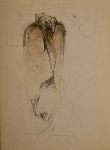 Drawing Mummified Falcon