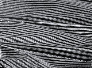 Lines Monochrome