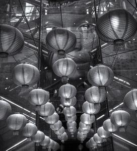Chinese Lanterns Monochrome