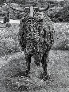 Sculpture Of A Bull Monochrome