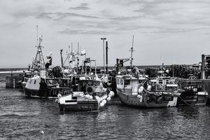 Seahouses Fishing Boats Monochrome