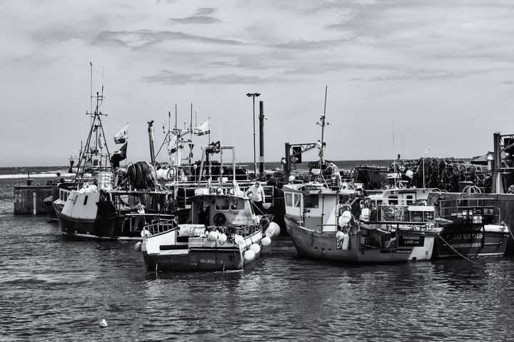 Seahouses Fishing Boats Monochrome - JT54Photography