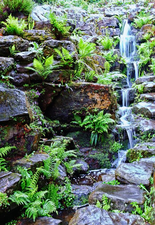 Waterfall And Ferns - JT54Photography