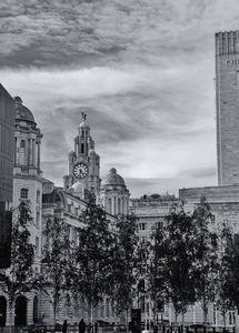 Liverpool Street Scene Monochrome