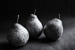 Autumn Pears Monochrome