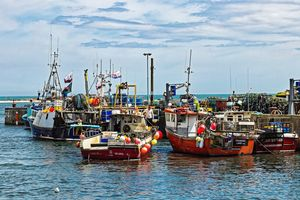 Fishing Boats At Seahouses