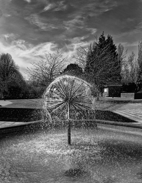 Water Feature Monochrome - JT54Photography