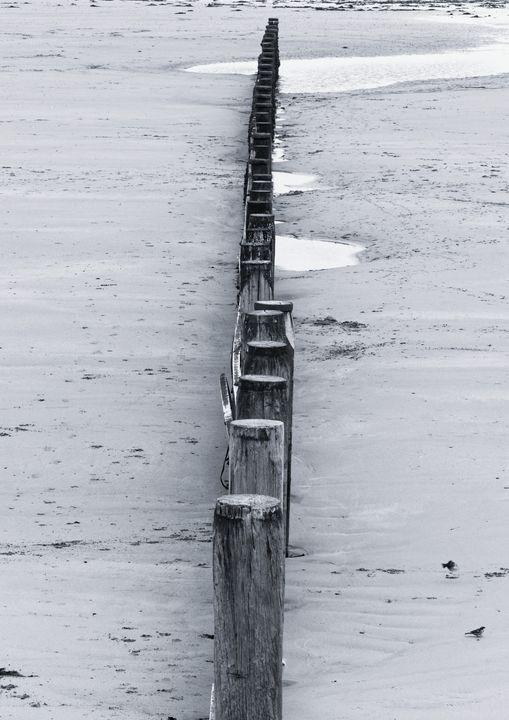 Beach Groynes Monochrome - JT54Photography