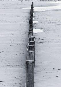 Beach Groynes Monochrome